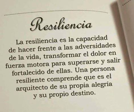 Image result for resiliencia imagen
