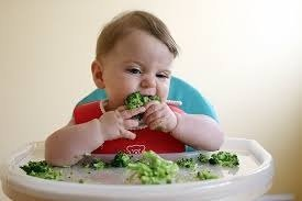 Importancia Del Baby Led Weaning - Salud