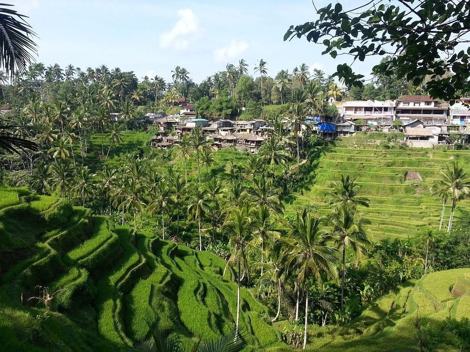 Costs and excellent places to visit in Bali